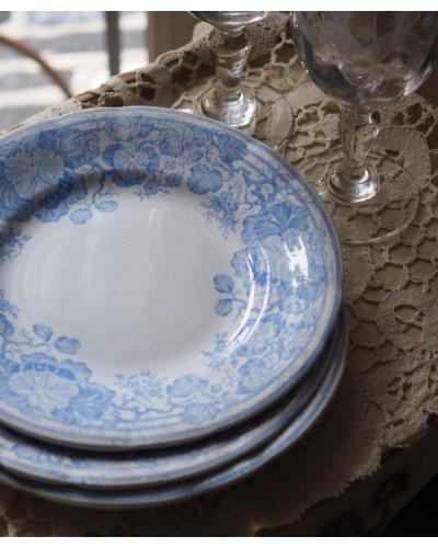 明るいブルーのプレート サルグミンヌU&C
