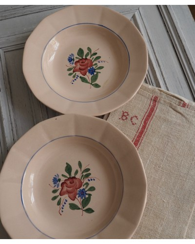 2枚組  バラ柄クルーズ皿  ディゴワン・サルグミンヌ