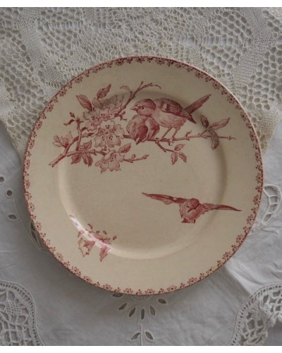 サルグミンヌ「Favori」平皿