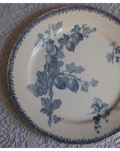デザート皿 GROSEILLES(スグリ)サルグミンヌU&C