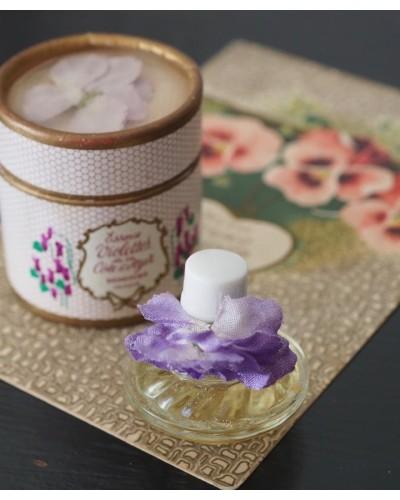 ベルドゥ社・紙箱付きのスミレの香水瓶