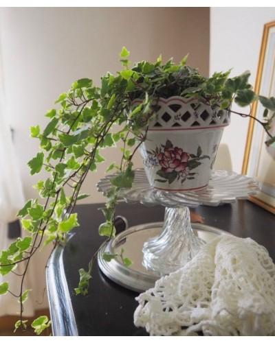 陶製・鉢カバー