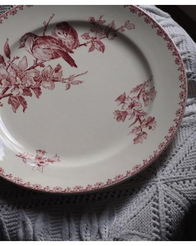 サルグミンヌ  「Favori」平皿
